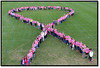 "The students at Owen J. Roberts Middle School donated $2 for Unite for Her and an item for the Coventry Food Pantry and/or purchase a Unite For Her t-shirt in order to participate in the Pink Ribbon picture.   A Walk-A-Thon was also held in Wildcat Stadium.<br /> Mr. Burns gets the ""Good Sport"" award for going up in the bucket lift to take the picture.<br /> <br /> Submitted by Krista Venza"