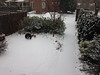 Karen Youch Lundy, of West Reading, submitted this photo of her back yard around 4 p.m. Dec. 8.